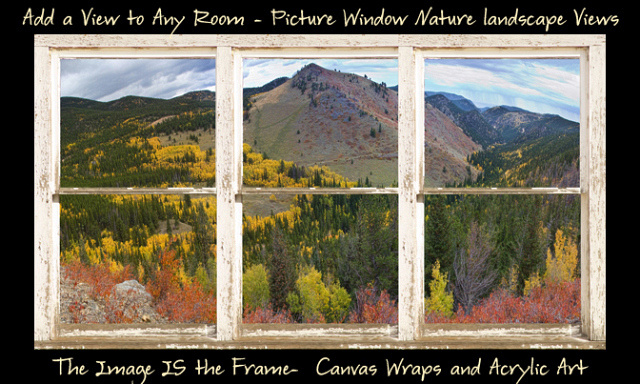 Colorful Colorado Autumn Rustic WT Window View 600ss Autumn Aspen Trees White Horse Barn Picture Window Frame View