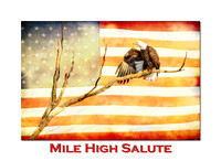 Mile High American Bald Eagle Salute