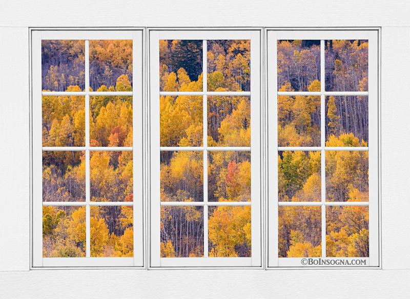 Autumn Aspen Trees White Picture Window Frame View