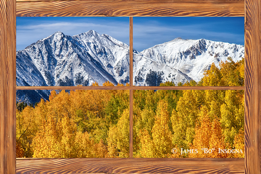 Autumn Aspen Tree Forest Barn Wood Picture Window Frame View