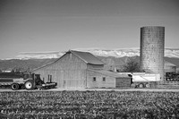 Colorado-Front-Range-Farming-BW