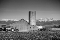 Colorado_Farming-bw