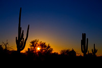 Just Another Sonoran Desert Sunrise