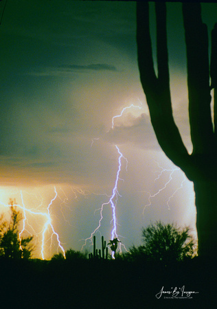 Tatum Lightning Storm with giant saguaro cactus North Phoenix / Scottsdale area.  Original shot on film and scanned in.