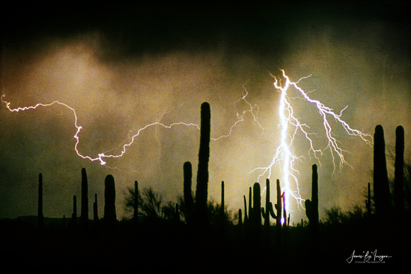Lightning striking the southwest desert landscape with saguaro cactus.